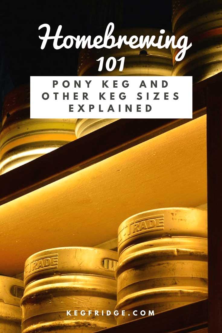 Kegfridge.com Homebrewing 101 Beer Keg Sizes Explained