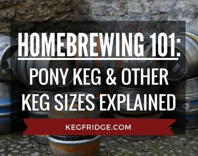 HomeBrewing 101 Pony Keg & Other Keg Sizes Explained Kegfridge.com