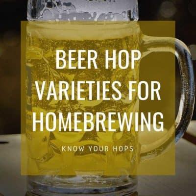 kegfridge.com Beer Hop Varieties for Homebrewing
