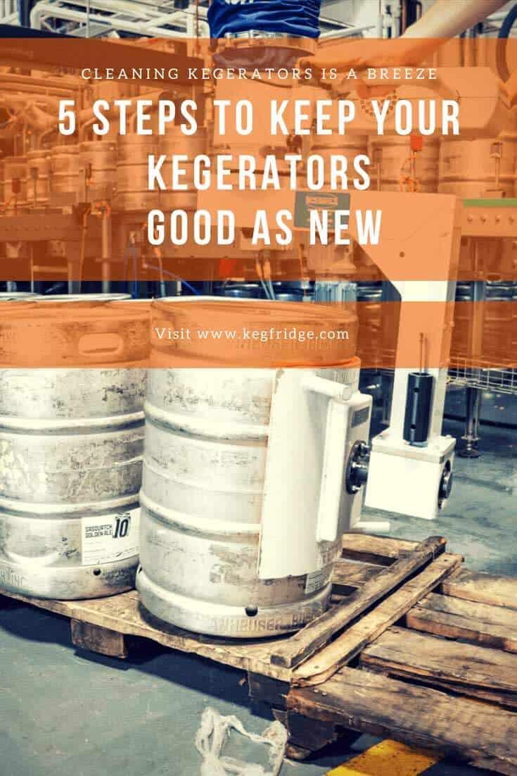 kegfridge 5 Steps to Keep Your Kegerators Good as New